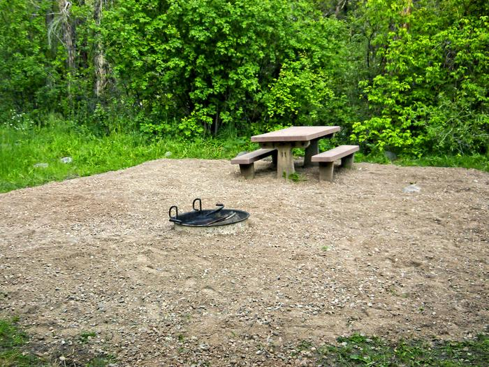 Campsite in Leigh Creek Campground