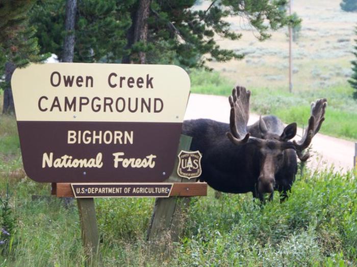 Owen Creek Campground Main Entrance Sign