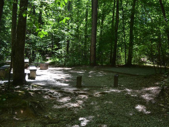 Campsite 019