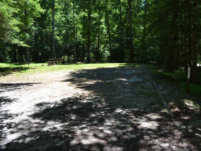 001Whetstone Horse Camp-Site 001