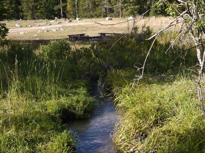 Creek near group areaRanger Creek Recreation Area