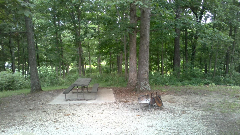Site 37 Pad