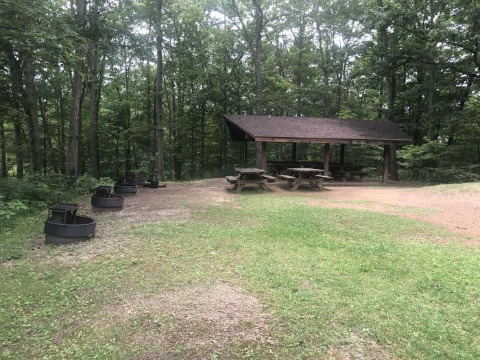 A photo of Site 001 of Loop 2 Point at LAKE VESUVIUS RECREATION AREA with Picnic Table, Fire Pit, Lean To / Shelter