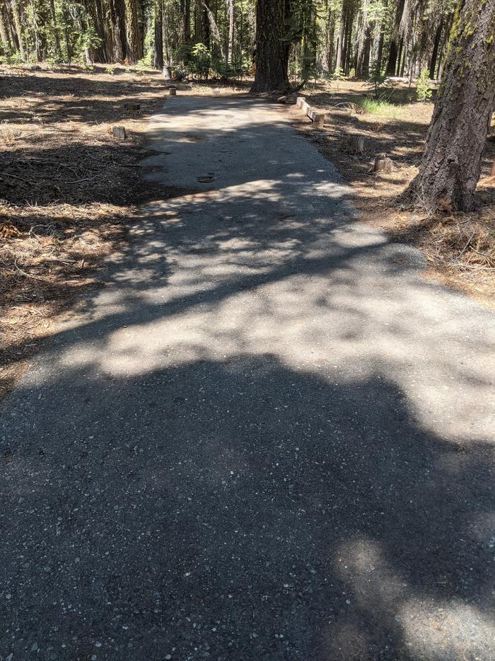 Little Beaver Site #45 Photo 1Site #45 parking spur - Level