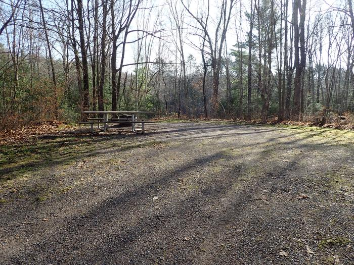 Site S20 picnic table and fire ringFire ring and picnic table at Site S20