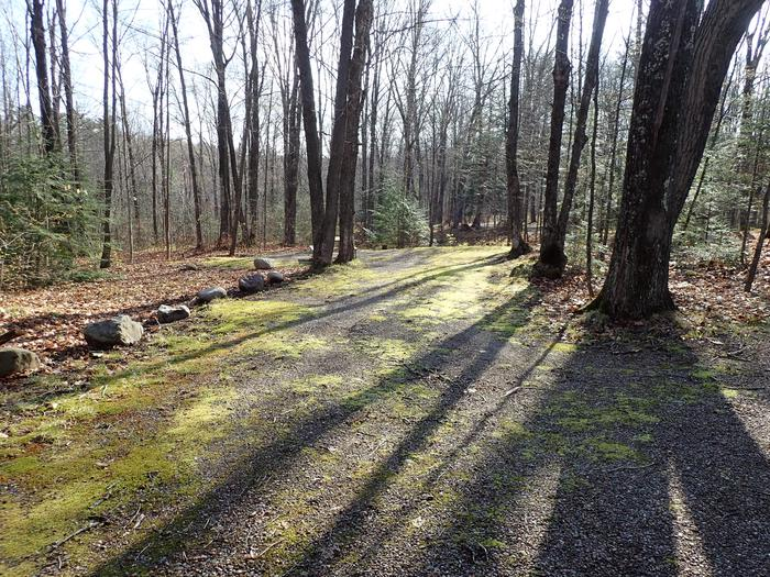 Spearhead Point Site S25 drivewayDriveway for Site S25 at Spearhead Point