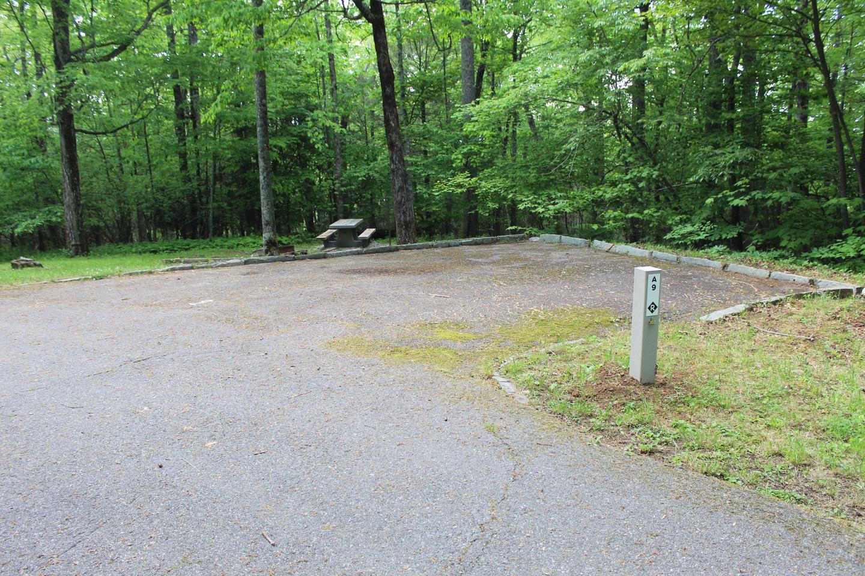 A Loop Site 9 - RV Non Electric