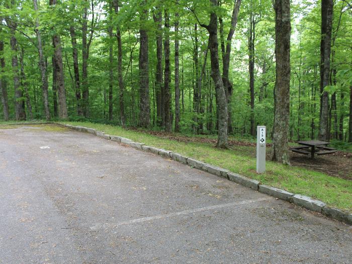 A Loop Site 15 - RV Non Electric