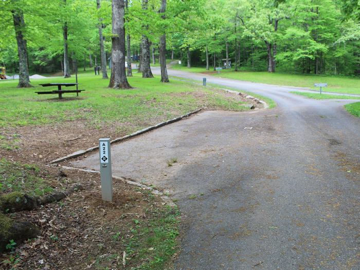 A Loop Site 22 - RV Non Electric