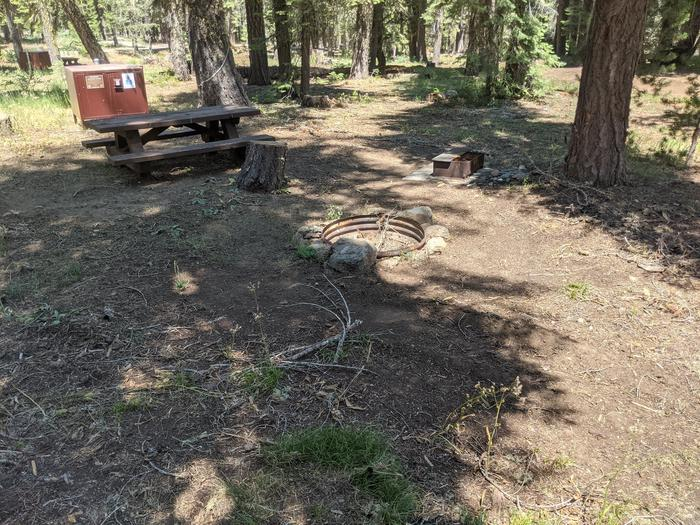 Little Beaver Site #55 Photo 2Site #55 with bear box, picnic table, fire ring, and grill in view