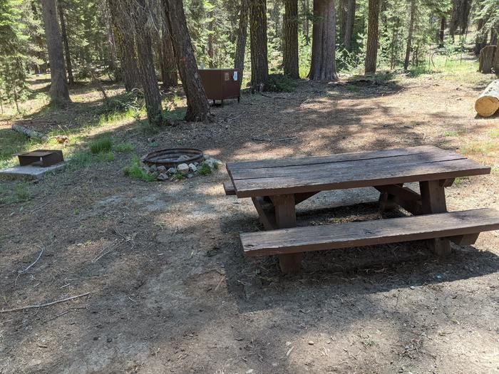 Little Beaver Site #56 Photo 3Site #56 with picnic table, fire ring, grill, and bear box in view