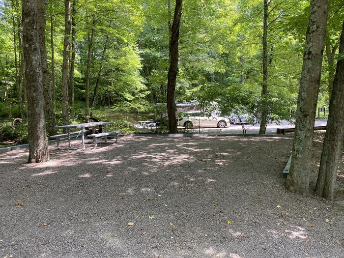 A photo of Site 003 of Loop MILL RUN RECREATION AREA at MILL RUN RECREATION AREA with Boat Ramp, Picnic Table, Fire Pit, Shade