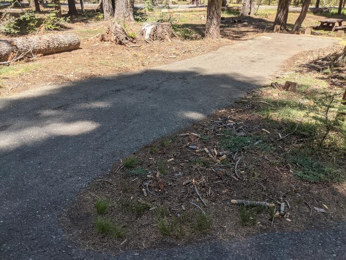 Little Beaver Site #65 Photo 1Site #65 parking spur