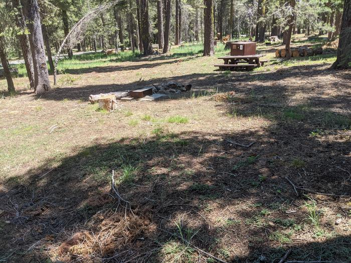 Little Beaver Site #65 Photo 3Site #65 with bear box, picnic table, fire ring, and grill in view