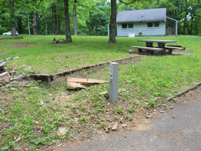 Loop B Site 29 - Standard Non Electric