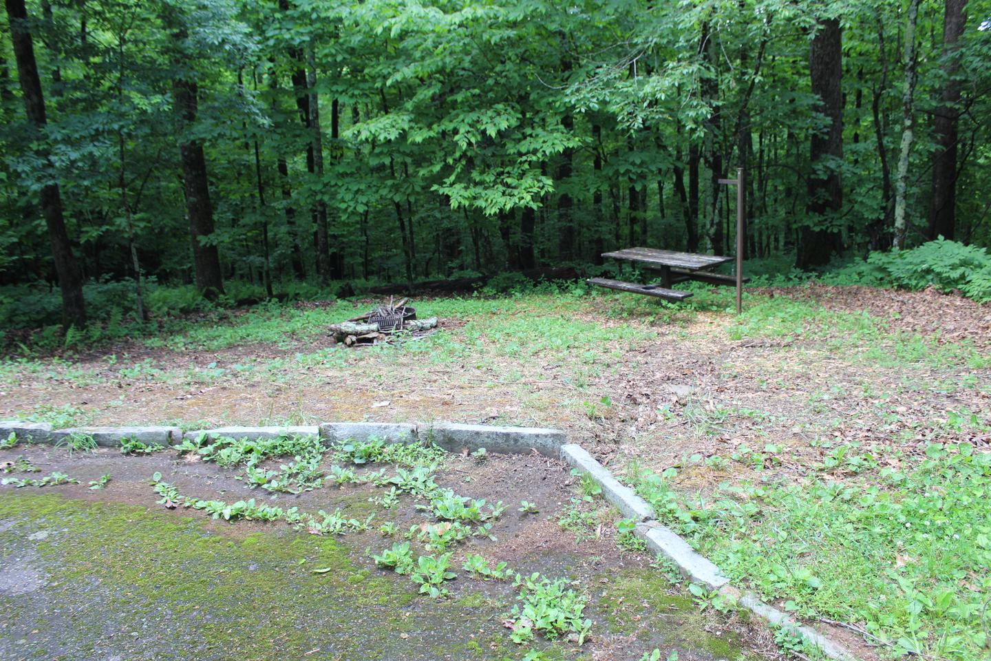 Loop A Site 17 - RV Non Electric Additional Photo