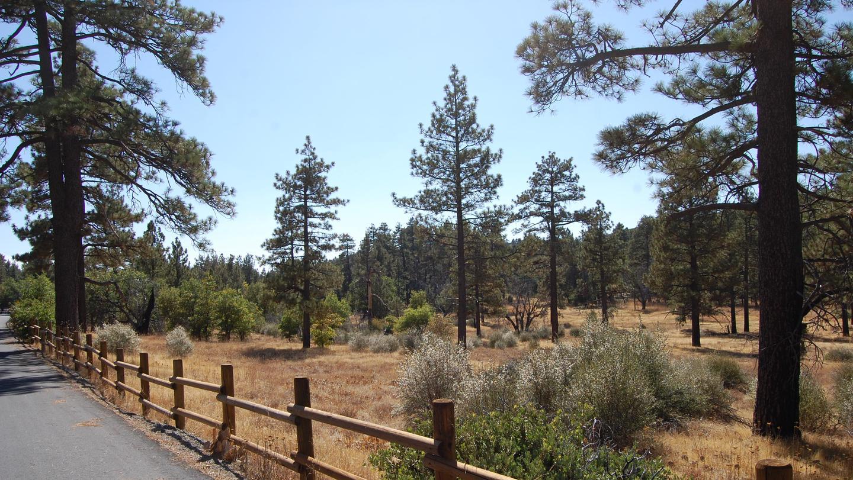 Laguna Campground Entrance
