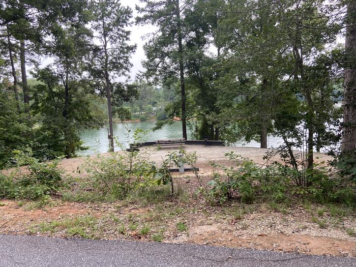 A photo of Site 62 of Loop SPRINGFIELD  at SPRINGFIELD with Picnic Table, Electricity Hookup, Fire Pit, Shade, Tent Pad, Waterfront, Lantern Pole, Water Hookup