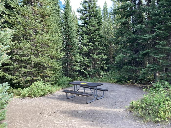 A photo of Site 130 of Loop F at Colter Bay Campground with Picnic Table, Fire Pit, Shade, Food Storage, Tent Pad