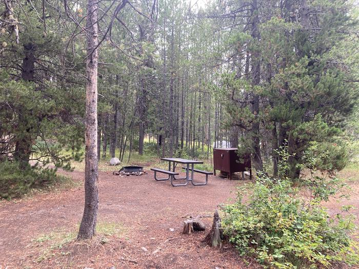 A photo of Site 266 of Loop M at Colter Bay Campground with Picnic Table, Fire Pit, Food Storage