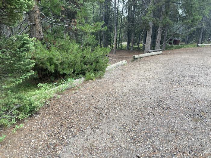 A photo of Site 318 of Loop O at Colter Bay Campground with Picnic Table, Fire Pit, Food Storage