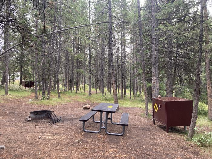A photo of Site 338 of Loop O at Colter Bay Campground with Picnic Table, Fire Pit, Food Storage