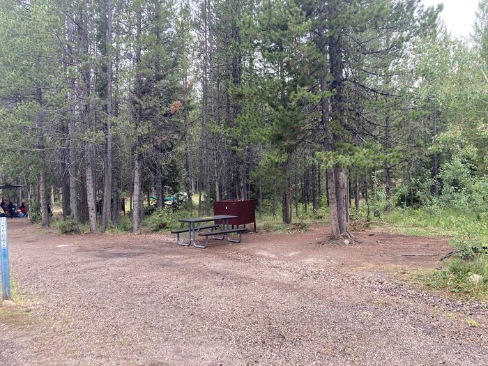 A photo of Site 262 of Loop M at Colter Bay Campground with Picnic Table, Fire Pit, Food Storage