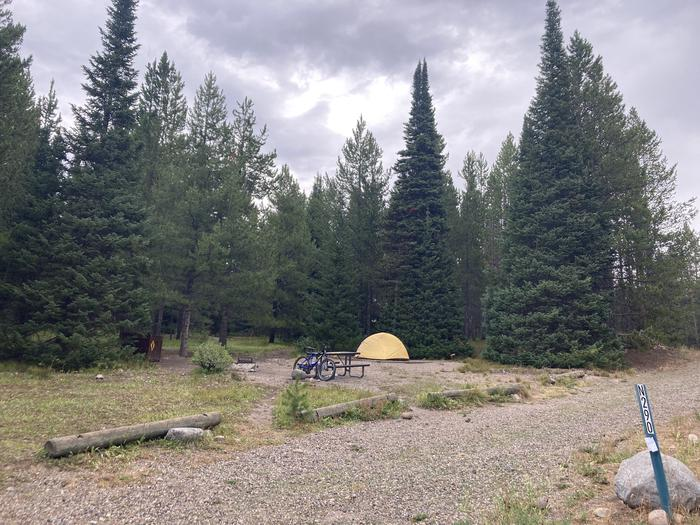 A photo of Site 290 of Loop N at Colter Bay Campground with Picnic Table, Fire Pit, Food Storage