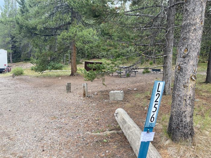 A photo of Site 256 of Loop L at Colter Bay Campground with Picnic Table, Fire Pit, Food Storage