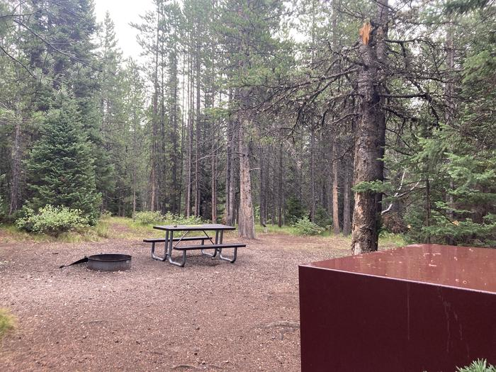 A photo of Site 334 of Loop O at Colter Bay Campground with Picnic Table, Fire Pit, Food Storage
