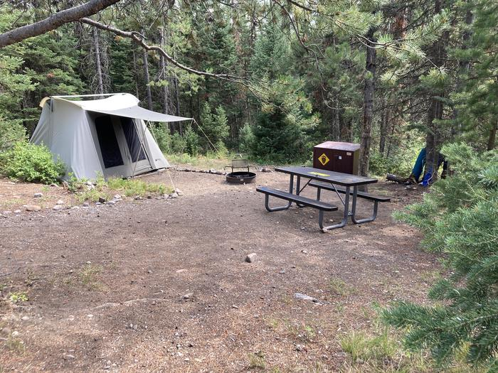 A photo of Site 138 of Loop G at Colter Bay Campground with Picnic Table, Fire Pit, Food Storage, Tent Pad