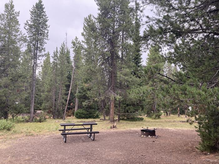 A photo of Site 292 of Loop N at Colter Bay Campground with Picnic Table, Fire Pit, Food Storage