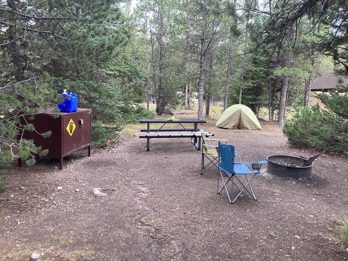 A photo of Site 255 of Loop L at Colter Bay Campground with Picnic Table, Fire Pit, Food Storage