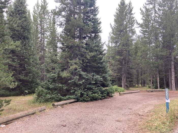 A photo of Site 331 of Loop O at Colter Bay Campground with Picnic Table, Fire Pit, Food Storage