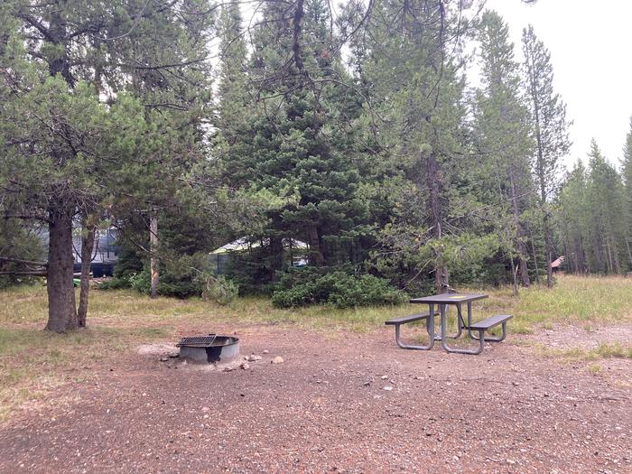 A photo of Site 342 of Loop O at Colter Bay Campground with Picnic Table, Fire Pit, Food Storage