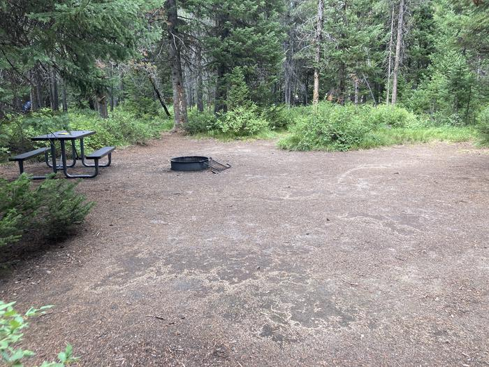 A photo of Site 12 of Loop A at Colter Bay Campground with Picnic Table, Fire Pit, Food Storage