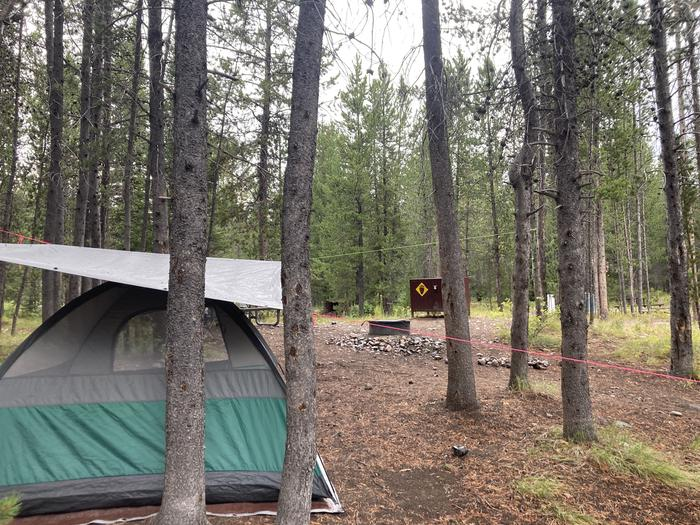 A photo of Site 281 of Loop M at Colter Bay Campground with Picnic Table, Fire Pit, Food Storage