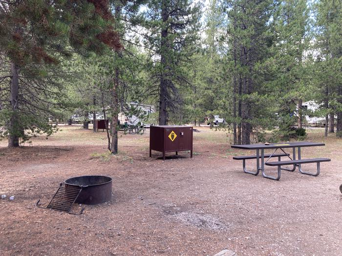 A photo of Site 155 of Loop H at Colter Bay Campground with Picnic Table, Fire Pit, Food Storage
