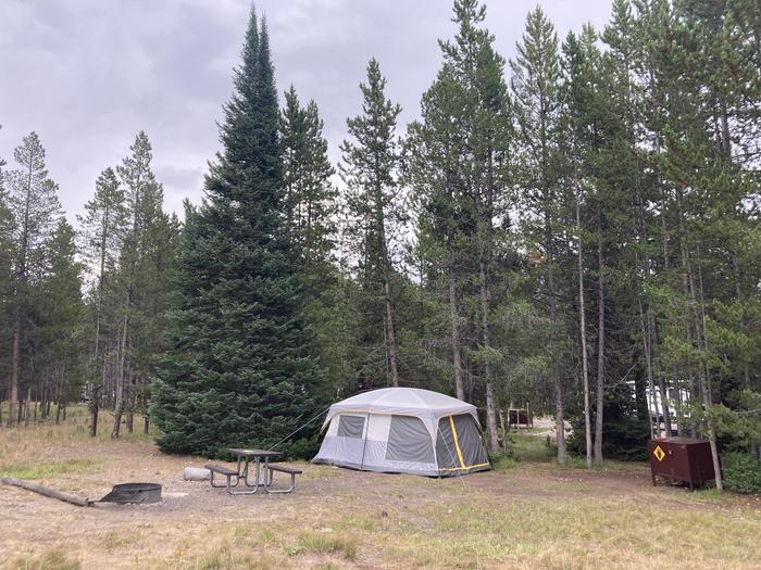 A photo of Site 236 of Loop L at Colter Bay Campground with Picnic Table, Fire Pit, Food Storage