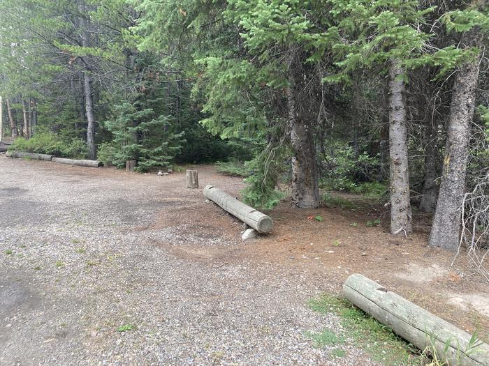 A photo of Site 233 of Loop L at Colter Bay Campground with Picnic Table, Fire Pit, Food Storage