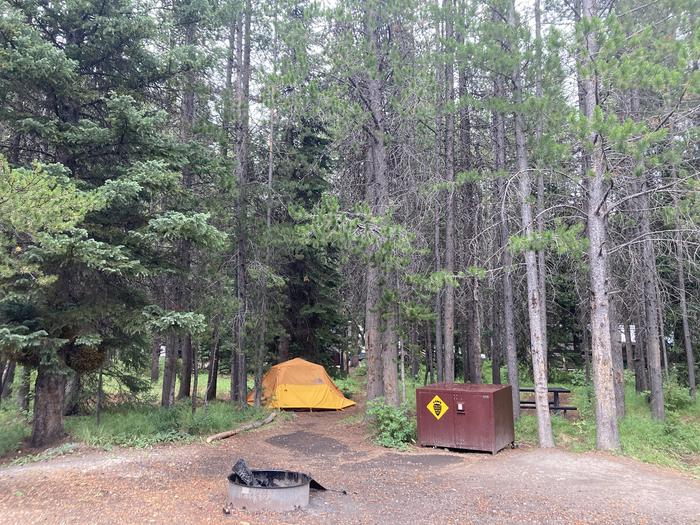 A photo of Site 279 of Loop M at Colter Bay Campground with Picnic Table, Fire Pit, Food Storage