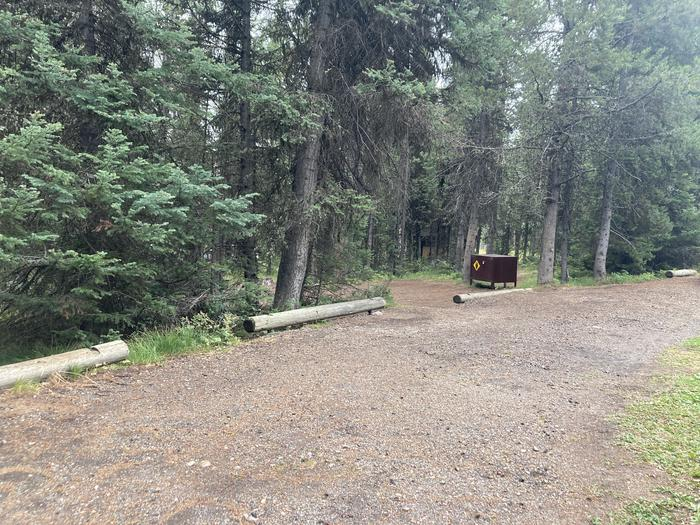 A photo of Site 313 of Loop O at Colter Bay Campground with Picnic Table, Fire Pit, Food Storage
