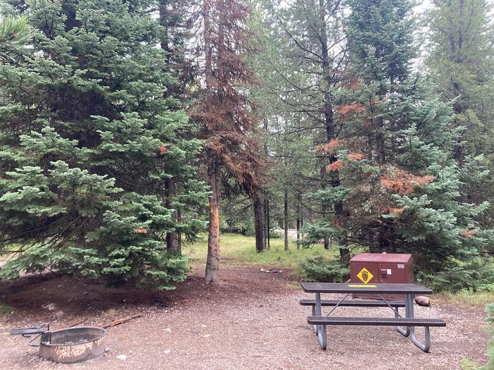 A photo of Site 307 of Loop N at Colter Bay Campground with Picnic Table, Fire Pit, Food Storage