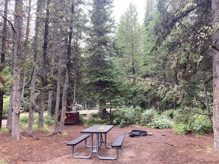 A photo of Site 35 of Loop B at Colter Bay Campground with Picnic Table, Fire Pit, Food Storage