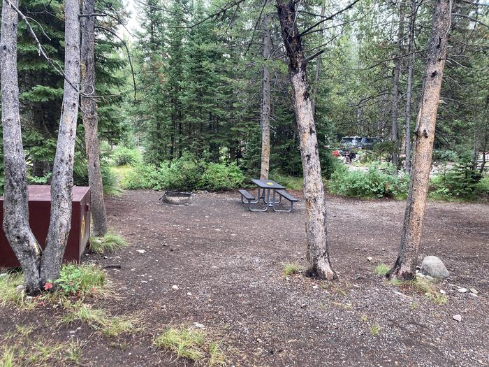 A photo of Site 91 of Loop D at Colter Bay Campground with Picnic Table, Fire Pit, Food Storage