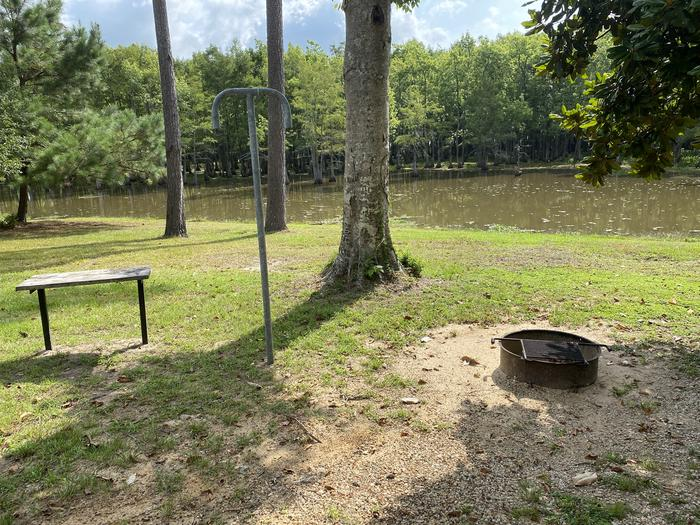 A photo of Site 31 of Loop MAGNOLIA RIDGE  at MAGNOLIA RIDGE with Fire Pit, Waterfront, Lantern Pole