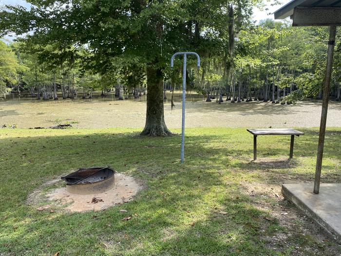 A photo of Site 29 of Loop MAGNOLIA RIDGE  at MAGNOLIA RIDGE with Fire Pit, Waterfront, Lantern Pole
