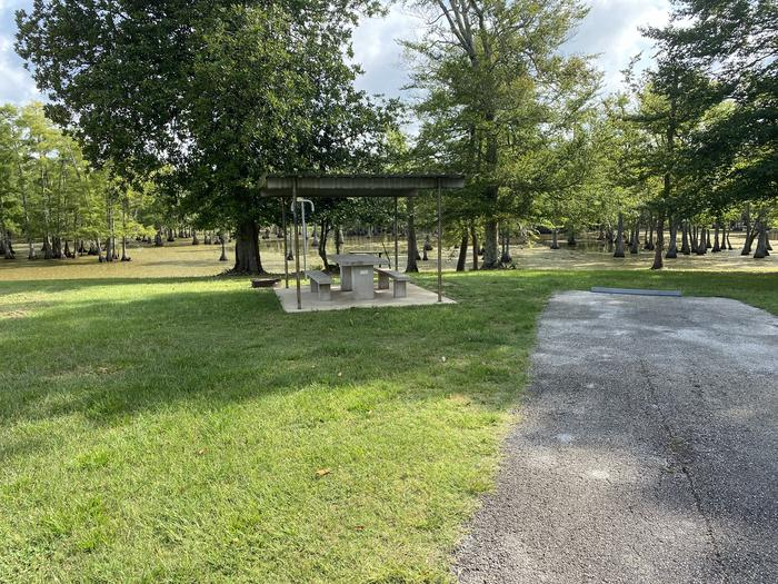 A photo of Site 25 of Loop MAGNOLIA RIDGE  at MAGNOLIA RIDGE with Picnic Table, Fire Pit, Lantern Pole, Water Hookup
