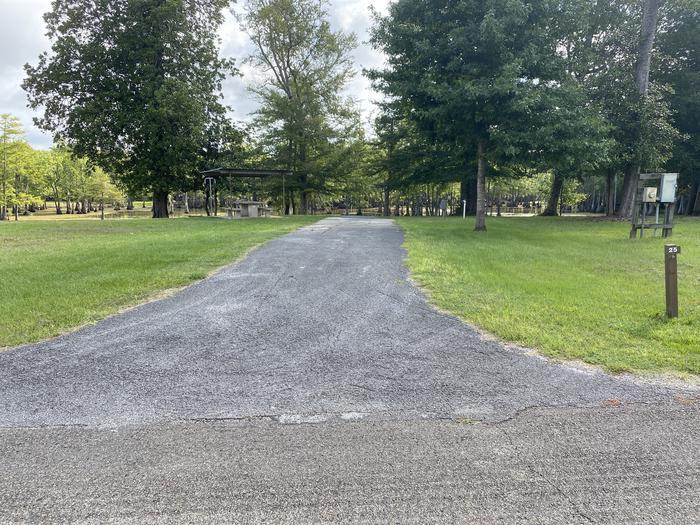 A photo of Site 25 of Loop MAGNOLIA RIDGE  at MAGNOLIA RIDGE with No Amenities Shown