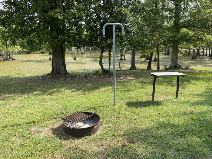 A photo of Site 25 of Loop MAGNOLIA RIDGE  at MAGNOLIA RIDGE with Fire Pit, Waterfront, Lantern Pole